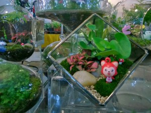 Terrariums are back from the 70's with a vengeance!