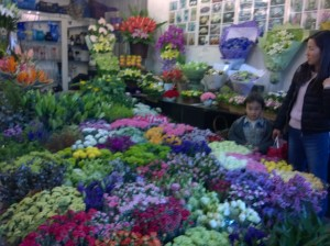 Spring has sprung at the Pudong Flower Market