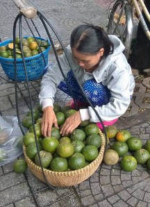 Balancing act-green oranges in large baskets on a pole that she will wear across her shoulders as she walks and sells her fruit
