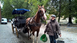 Horse drawn carriage is the popular choice in Bruges