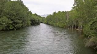 Boise river view