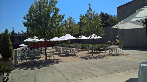 Outdoor space at Novelty Hill/Januik
